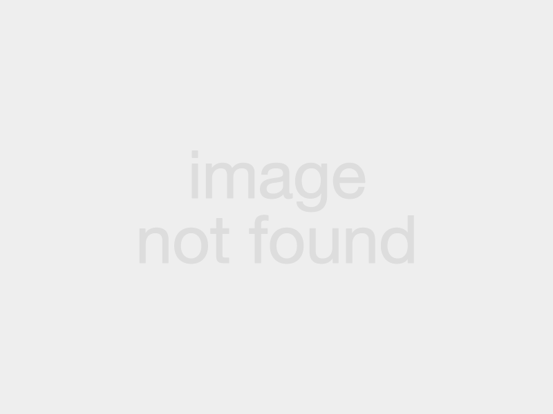 the-trouts-take-on-berlin